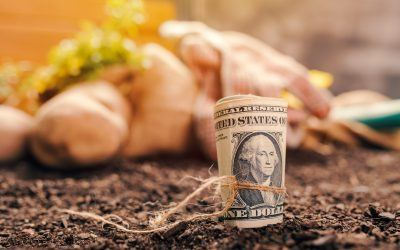 Will There Be a Third Round of Bailouts for Farmers in 2020?