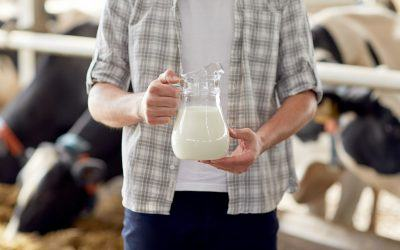 Will the Dairy Industry Recover in 2020?
