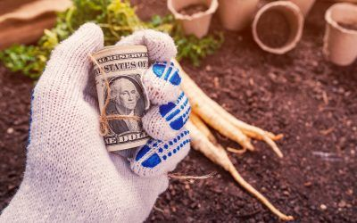 5 Smart Tips for Successfully Refinancing Your Farm
