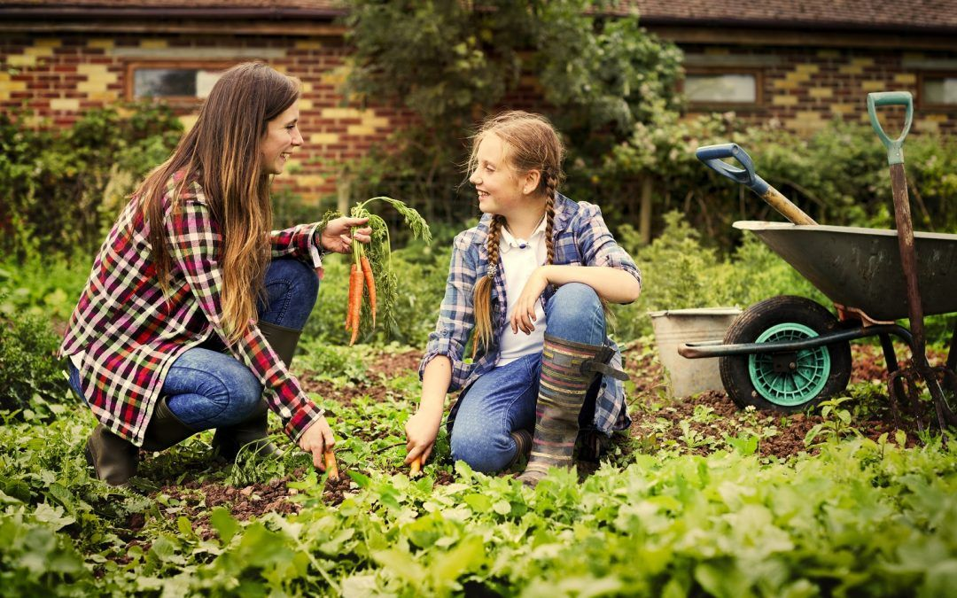 How to Buy a Hobby Farm: The Lending Process