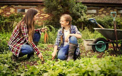 How to Buy a Hobby Farm: The Lending Process