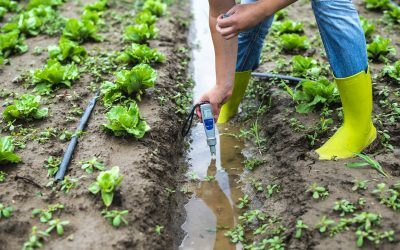 How to Protect Your Farm's Water Supply from Pollution
