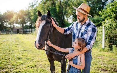 Advice for Raising Animals on Your Hobby Farm