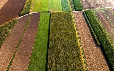 Improving Soil Quality on American Farms