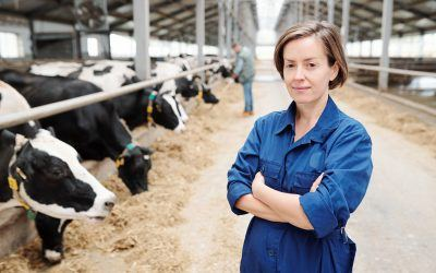Will the Dairy Industry Ever Recover? Experts Say Yes!