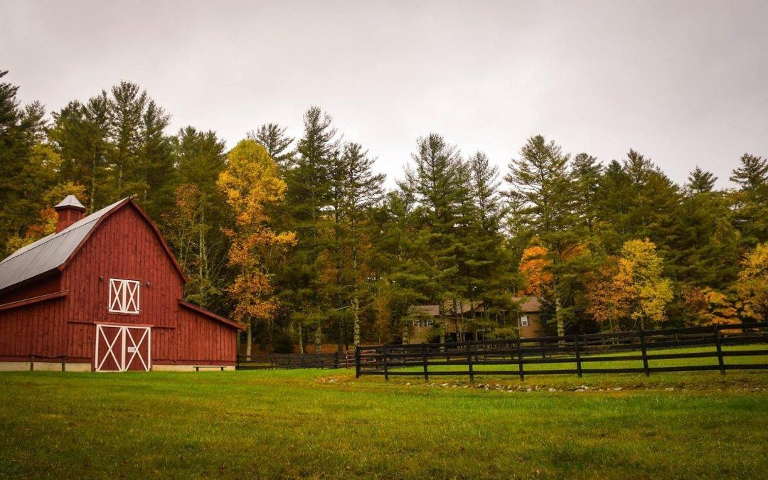 Living Off the Grid: A Quick Guide to Loans for Buying Ranches
