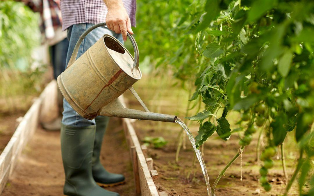 Exploring New Water Sources for Farming in America