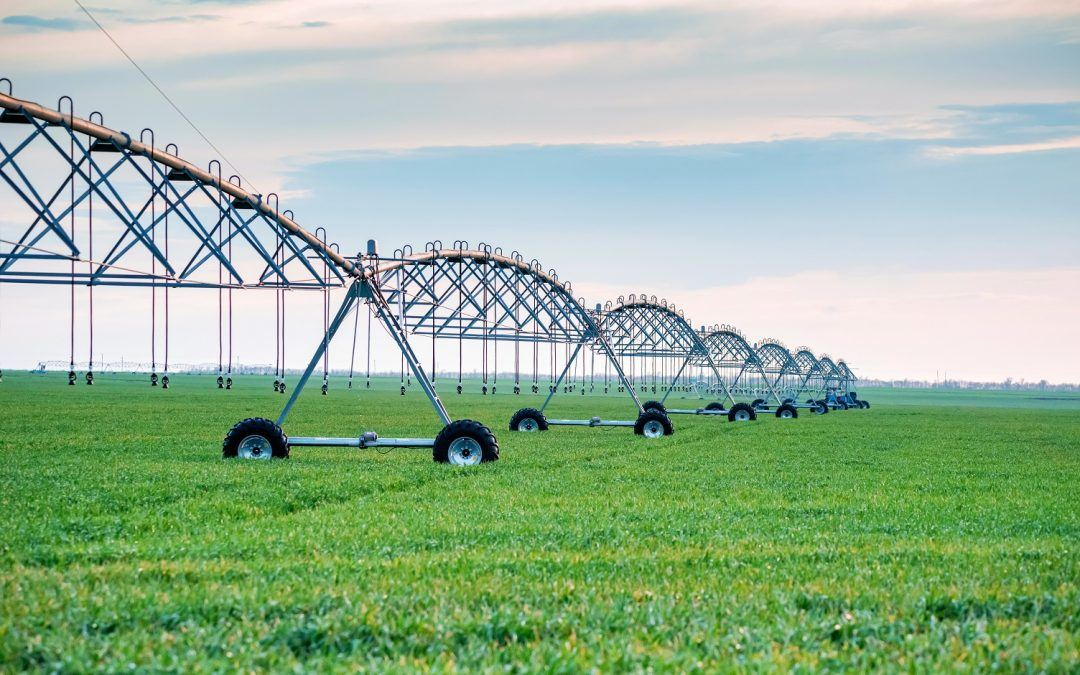 Top Water Saving Irrigation Methods for U.S. Farms