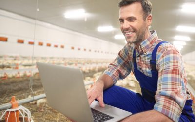 How to Choose a Lender for Agriculture Production