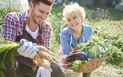 Top 7 Resources for New & Beginning Farmers