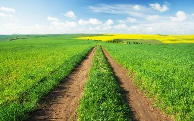 Quick Guide to Financing a Rural Land Purchase